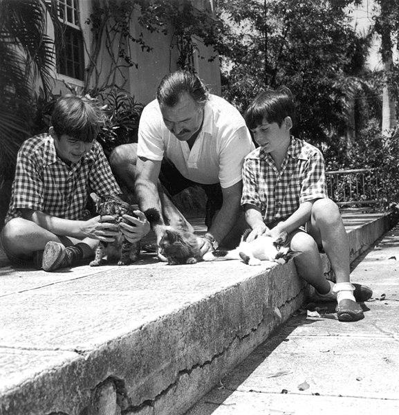 Los gatos de Hemingway