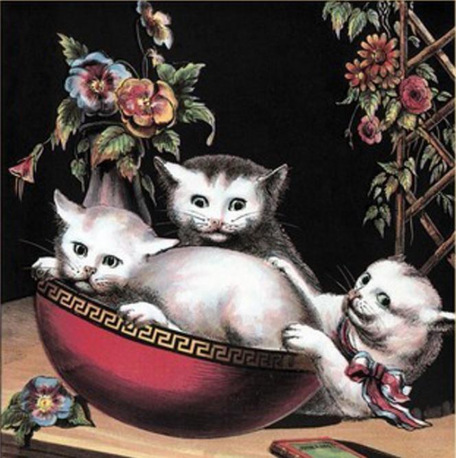 Presencia de los gatos en la literatura